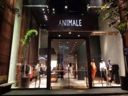 Trabalho escravo na Animale: R$ 698 na loja, R$5 para o costureiro